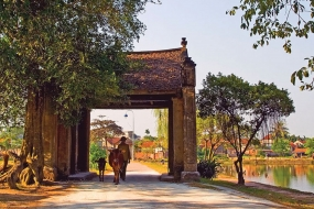 FULL DAY DUONG LAM VILLAGE & THAY PAGODA TOUR