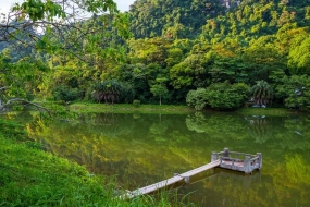 FULL DAY CUC PHUONG NATIONAL PARK TREKKING TRIP
