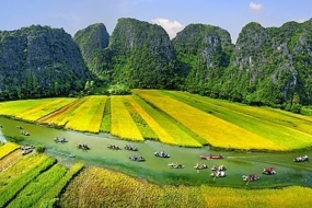 Full day The Ancient Capital Ninh Binh